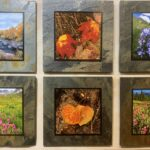 Photo Tiles By Mark Nobles