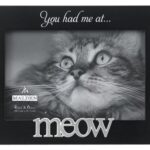 Pet Frames have arrived!